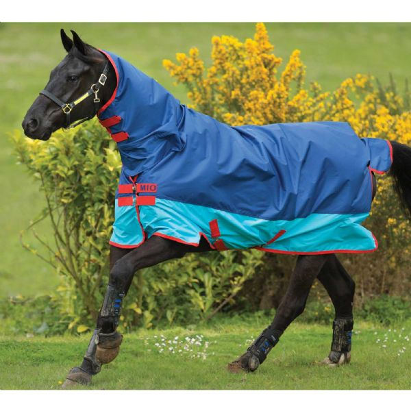 Spring & Summer Turnout Rugs